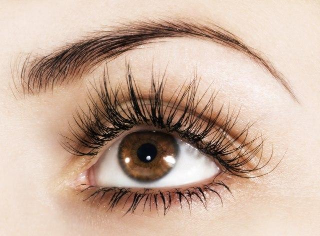 Maquillaje de Ojos Cafes Maquillaje Sencillo Para Ojos